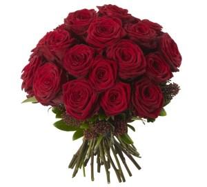Фото 51 розы в городе Минск