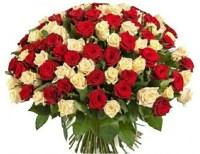 Фото красных роз в Минске