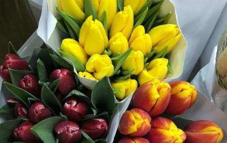 Мы всегда следим за тем, чтобы Вы получали свежие и красивые цветы, поэтому ко Дню Влюбленных мы заказали и закажем еще только самые свежие и красивые цветы для Вас, а также мягкие игрушки, чтобы Ваша половинка была в восторге от цветов и игрушек) Вот несколько фото нашего пополнения: