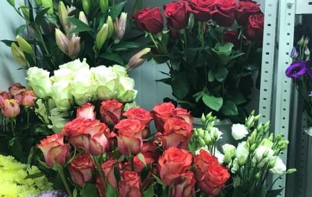Для Вас мы постоянно пополняем наши запасы только самыми свежими и красивыми цветами. Спешите заказать=) Несколько фотографий прибивших: